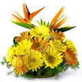 Send Valentines Day Flowers to Delhi