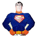 Send Cakes to Delhi : Send Superman Cakes to Delhi