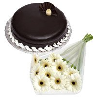 Best Flower Delivery Delhi - White Gerbera Chocolate Truffle Cake