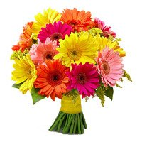 Same Day Flowers to Delhi : Mix Gerbera Bouquet