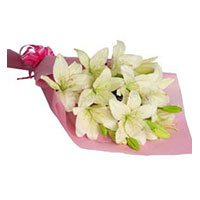 Same Day Flower Delivery in Delhi :  Pink White Lily