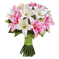 Valentines Day Flower Delivery in Delhi Shahdara: Pink White Lily