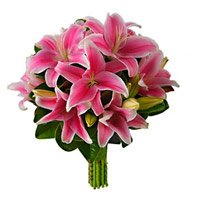 Flowers in Delhi Same Day Delivery :  Pink Lily to Delhi