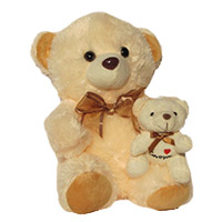 Send Gifts to Delhi - Teddy Day Gifts