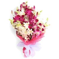Orchids Flower Delivery in Delhi