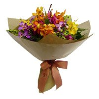 Orchid Flower Delivery in Delhi