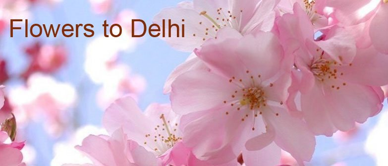 Send Flowers to Delhi Azad Nagar