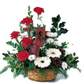 Flowers to Delhi : Anniversary Flowers to Delhi : Red Carnation White Gerbera Basket