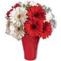 Flowers to Delhi : Send Flowers to Delhi : Red and White Gerbera Bouquet