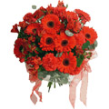 Send Flowers to Delhi : Anniversary Flowers to Gurgaon : Red Carnation and Gerbera Bouquet