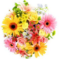 Get Well Soon Flowers to Delhi : Flowers to Delhi