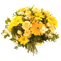 Send Flowers to Delhi : Flowers to Gurgaon