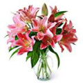 Send Flowers to Delhi, New Year Flowers to Delhi