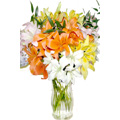 Flowers to Delhi, Send New Year Flowers to Delhi