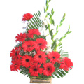 Send House Warming Flowers to Delhi : Flowers to Delhi : House Warming Flowers to Delhi