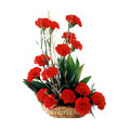 Flowers to Delhi : Send Flowers to Delhi : Red Carnation Basket