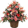 Send Flowers to Delhi, Valentines Day Flowers to Delhi