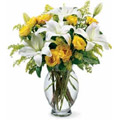 Send Flowers to Delhi : Get Well Soon Flowers to Delhi