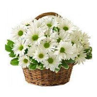 Deliver Flowers in Sri Ganganagar : Send Flowers to Sri Ganganagar