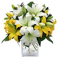 Send Anniversary Flowers to Delhi Same Day: Send Flowers to Delhi